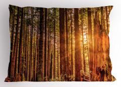 Ormanda Yürüyüş Temalı Yastık Kılıfı Ağaçlı Yeşil