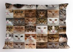 Kedi Yüzleri Desenli Yastık Kılıfı Kahverengi Beyaz