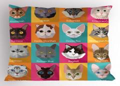 Kedi Cinsleri Desenli Yastık Kılıfı Şık Tasarım