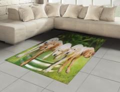 Islak Köpekler Halı (Kilim) Doğa Yeşil Dekoratif