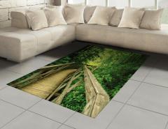 Ormandaki Ahşap Yol Halı (Kilim) Yeşil Doğa