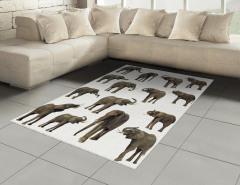 Göz Göze Filler Temalı Halı (Kilim) Beyaz Arka Planlı