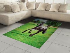 Çayırda Koşan At Halı (Kilim) Çayırda Koşan At