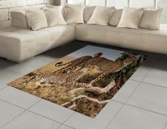 Çita Temalı Halı (Kilim) Kahverengi Vahşi Yaşam Şık
