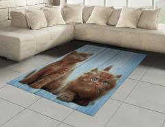 Kahverengi Yavru Kediler Halı (Kilim) Mavi Ahşap