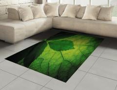 Yaprağın Arkası ve Önü Halı (Kilim) Yeşil Doğa