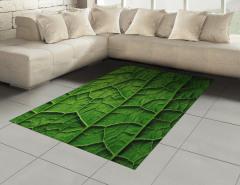 Yeşil Yapraklar ve Damarları Halı (Kilim) Doğa Şık