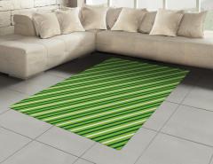 Yeşil ve Beyaz Çizgili Halı (Kilim) Geometrik Şık