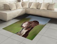 Uzaklara Bakan Köpek Halı (Kilim) Kahverengi