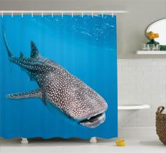 Balina Köpek Balığı Temalı Duş Perdesi Deniz Yaşamı
