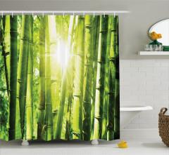 Bambu Ormanı ve Güneş Işığı Temalı Duş Perdesi Şık