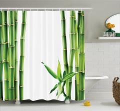 Bambu ve Yaprak Desenli Duş Perdesi Yeşil Trend