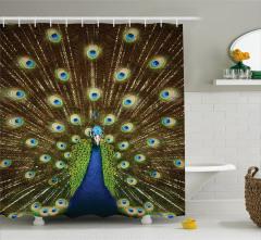 Tavus Kuşu Portreli Duş Perdesi Kahverengi Lacivert
