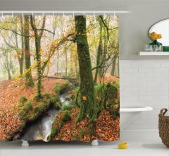 Sonbahar Temalı Duş Perdesi Doğa Orman ve Irmak