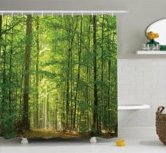Orman ve Güneş Işığı Temalı Duş Perdesi Yeşil Doğa