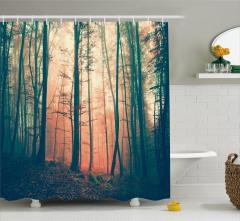 Ormanda Sonbahar Manzaralı Duş Perdesi Ağaç Sis