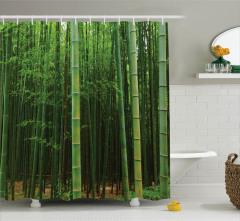 Yeşil Bambu Ormanı Desenli Duş Perdesi Modern