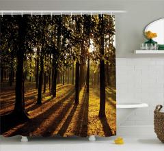 Ağaç ve Güneş Işığı Temalı Duş Perdesi Orman