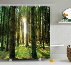 Güneş Işığı ve Orman Temalı Duş Perdesi Yeşil