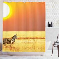 Zebra ve Güneş Temalı Duş Perdesi Şık Tasarım