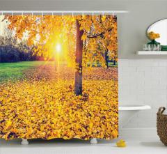 Sonbahar Temalı Duş Perdesi Dökülmüş Sarı Yapraklar