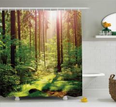 Doğada Sabah Temalı Duş Perdesi Orman Ağaçlar Yeşil