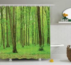 Doğada Huzur Temalı Duş Perdesi Ağaç Yeşil Yapraklar