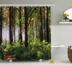 Doğada Huzur Temalı Duş Perdesi Ağaç Yeşil Orman
