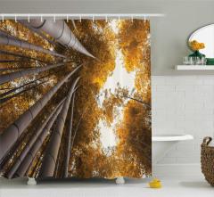 Bambu Ormanı Temalı Duş Perdesi Şık Tasarım