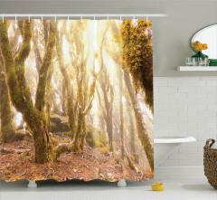 Ormanda Sabah Temalı Duş Perdesi Yeşil Sarı