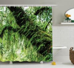 Orman Manzaralı Duş Perdesi Yeşil Ağaç Doğa