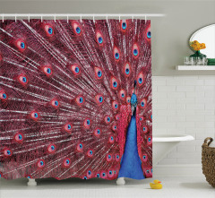 Tavus Kuşu Desenli Duş Perdesi Kırmızı Lacivert Doğa