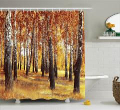 Sonbahar Temalı Duş Perdesi Orman Ağaç Sarı Doğa