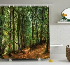 Yeşil Yol Temalı Duş Perdesi Ağaç Kahverengi Yeşil