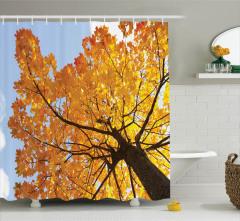 Sonbahar Temalı Duş Perdesi Ağaç Sarı Yaprak Doğa