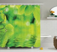 Yeşil Yapraklar ve Su Temalı Duş Perdesi Doğa Bahar