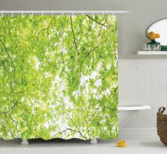 Yaprak Temalı Duş Perdesi Yeşil Ağaç Doğa Bahar