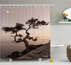 Doğa Manzaralı Duş Perdesi Deniz Kıyısında Ağaç