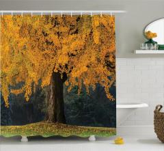 Sonbahar Temalı Duş Perdesi Sararmış Yapraklı Ağaç