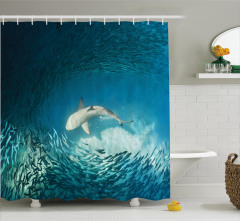 Balık Temalı Duş Perdesi Turkuaz Deniz Köpek Balığı