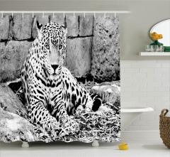 Nostaljik Görünümlü Duş Perdesi Siyah Beyaz Jaguar