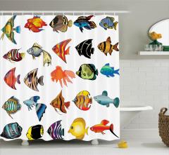Balık Türleri Kolajlı Duş Perdesi Deniz Canlıları