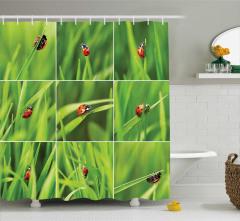 Uğur Böceği Desenli Duş Perdesi Yeşil Turuncu Doğa