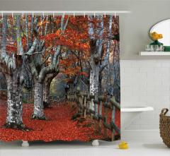 Sonbahar Temalı Duş Perdesi Turuncu Yaprak Doğa