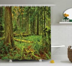 Yağmur Ormanı Manzaralı Duş Perdesi Yeşil Doğa