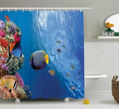 Okyanusta Yaşam Temalı Duş Perdesi Tropikal Balıklar