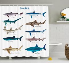 Köpek Balığı Türleri Kolajlı Duş Perdesi Beyaz