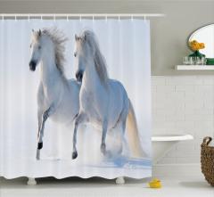 Beyaz Duş Perdesi Karlarda Koşan Yabani Atlar Doğa