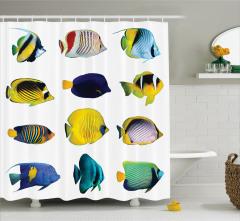 Rengarenk Balık Desenli Duş Perdesi Şık Tasarım