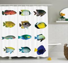 Balık Desenli Duş Perdesi Rengarenk Şık Tasarım